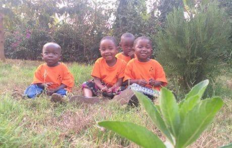 Die Kinder auf der Wiese