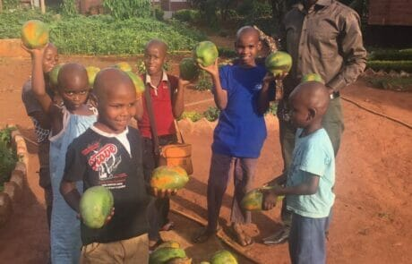 Marcel Mlacha, Director of SBS distributes the first papayas in an orphanage