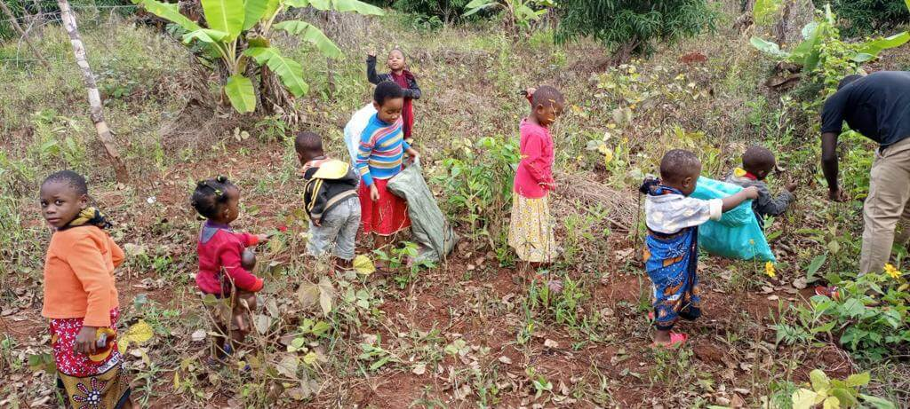Kinder bei der Bohnenernte